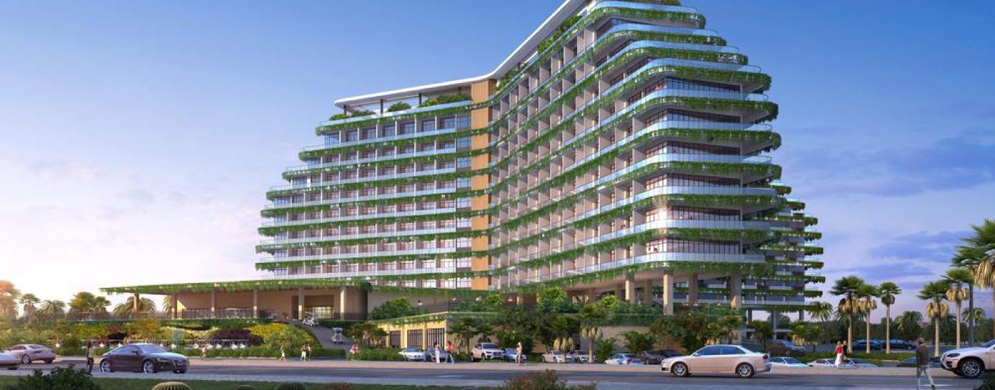 Burmese Teakwood Ulu Tiram Jb Johor Bahru Singapore Solid